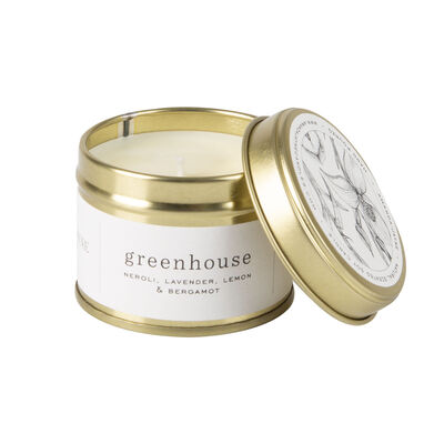 Amanda Jayne Greenhouse Candle in Gold Tin