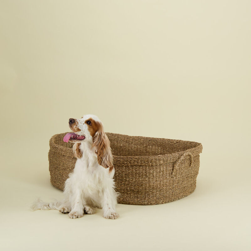 Seagrass Dog Bed with Pillow -  nude-bone