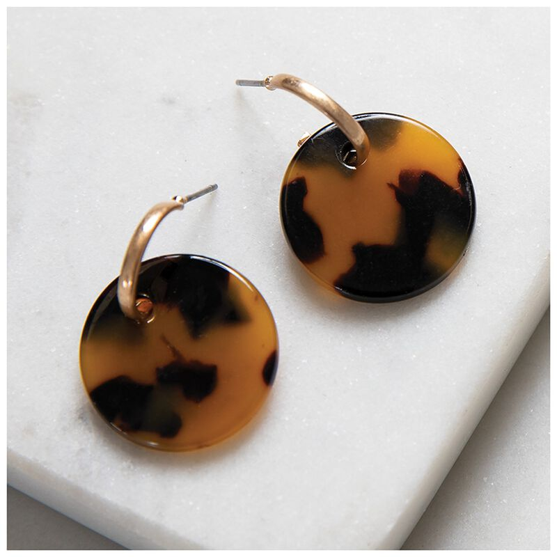 Resin Disc Stud Earrings -  brown