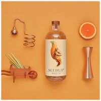 Seedlip Grove Non-Alcoholic Spirit  -  c99
