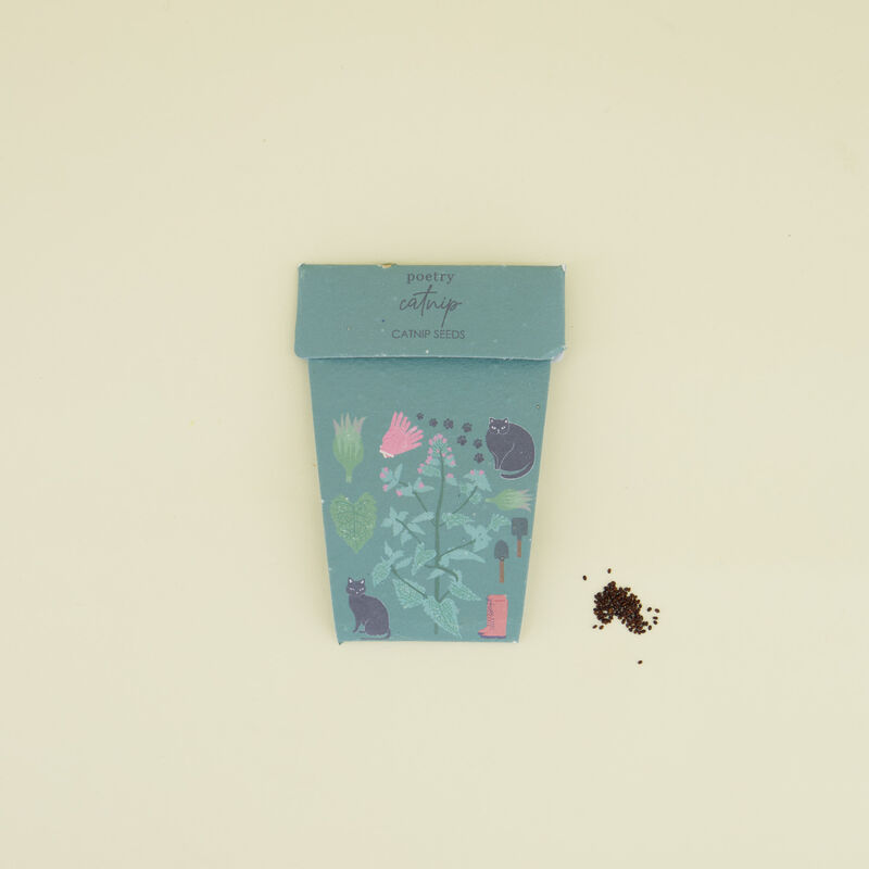Catnip Pot Card -  c99