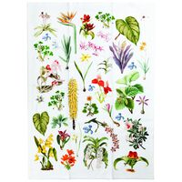 Botanical Tea Towel -  assorted
