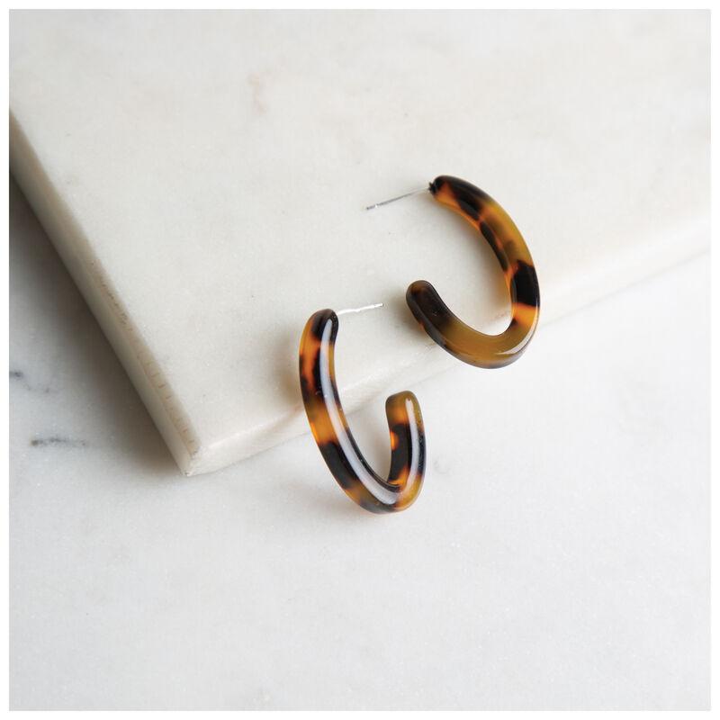 Resin Oval Hoop Earrings -  brown