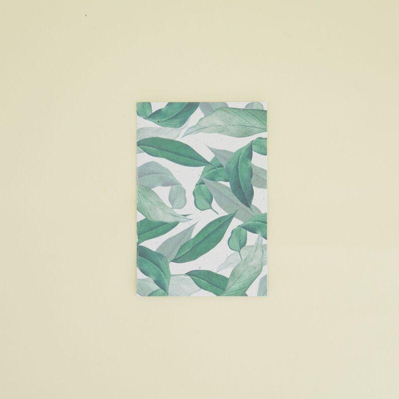 Green Jade Growing Paper Card -  c69
