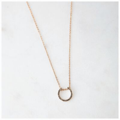 Diamante & Horseshoe Delicate Necklace