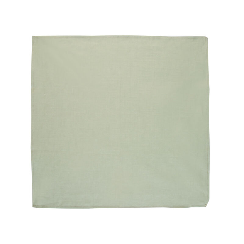 Basil Green Linen Napkin Set -  palegreen