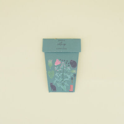 Catnip Pot Card