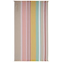 Striped Turkish Towel -  assorted