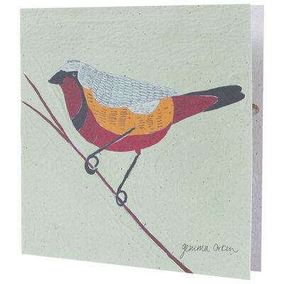 Gemma Orkin Sage Bird Card