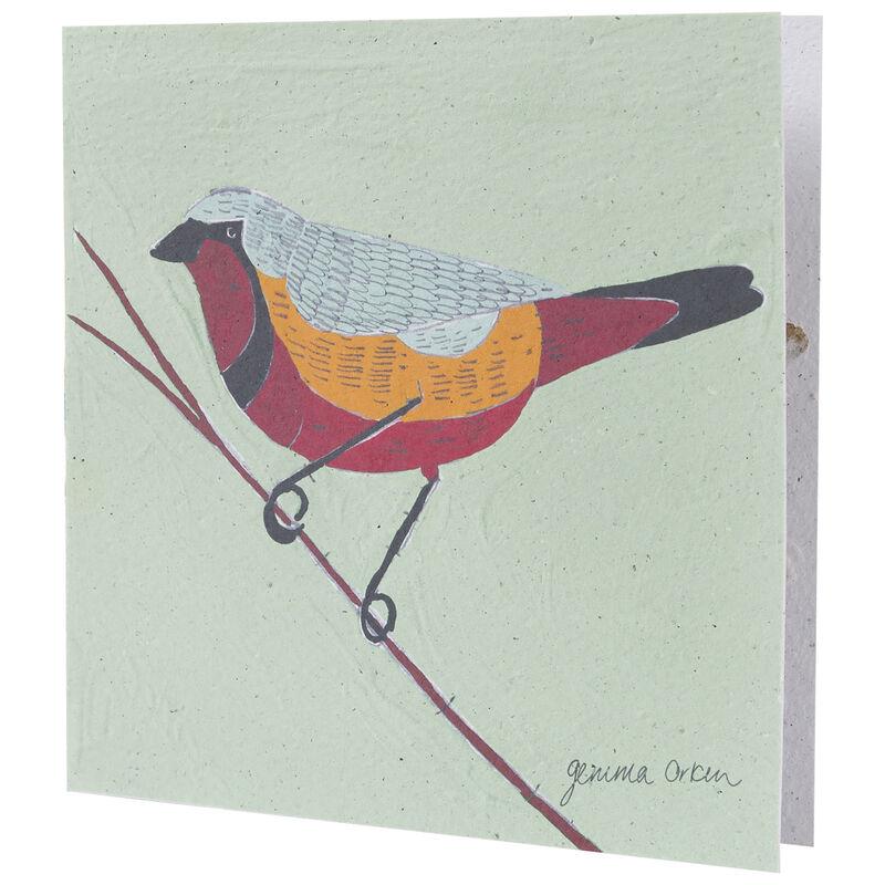 Gemma Orkin Sage Bird Card -  assorted