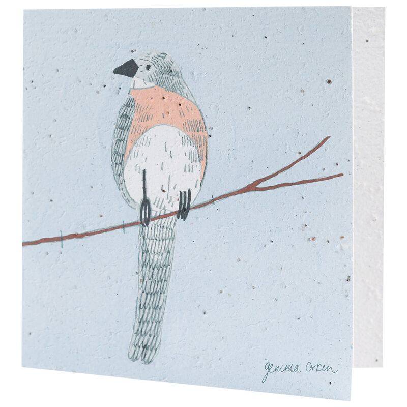 Gemma Orkin Blue Bird Card -  assorted